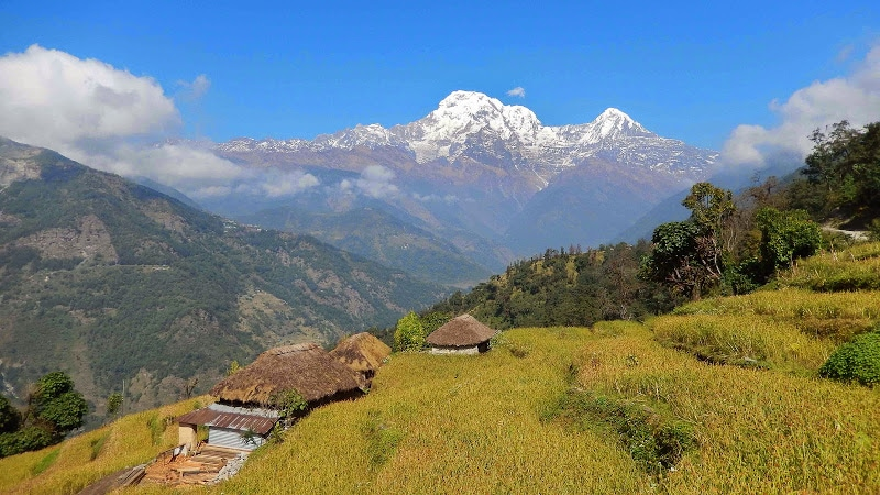 paysage-nepal